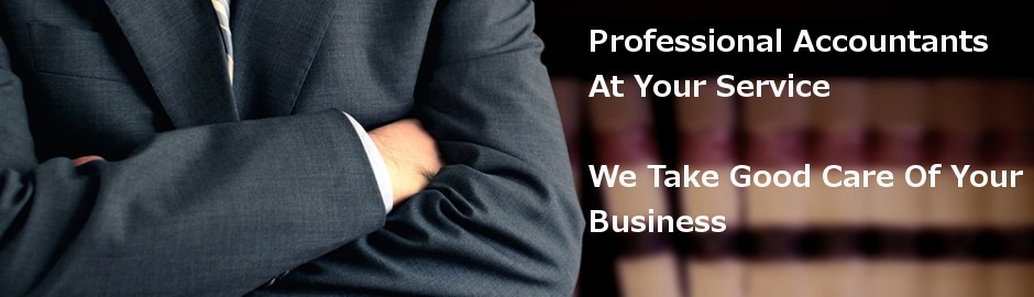 Professional Accountants Services